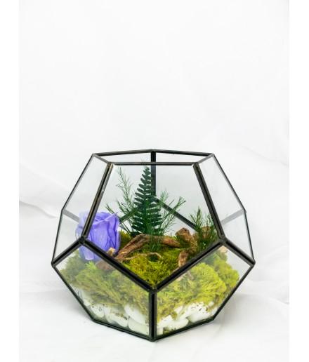 Terariu geometric cu mușchi decorativ 20 x 16 cm