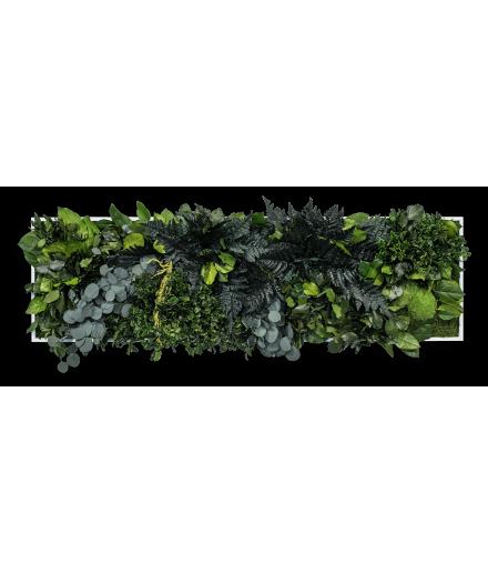 Tablou mușchi și plante stabilizate 140x40 cm