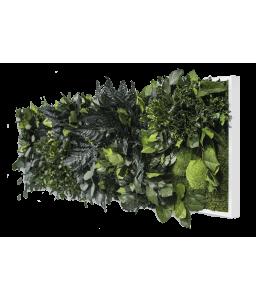 Tablou muschi decorativ si plante stabilizate