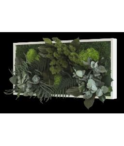Tablou muschi si plante stabilizate 57 x 27 cm